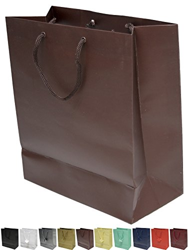 Novel Box® Brown Matte Laminated Euro Tote Paper Gift Bag Bundle 8X4X10 (10 Count) + Custom NB Pouch