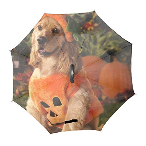 Dog Dressed As A Pumpkin Reverse Umbrella with UV Protection, Upside Down Umbrella With C-Shaped Handle ()