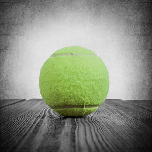 Vintage Tennis Ball Wall art, Sports Decor, Available as print or canvas.