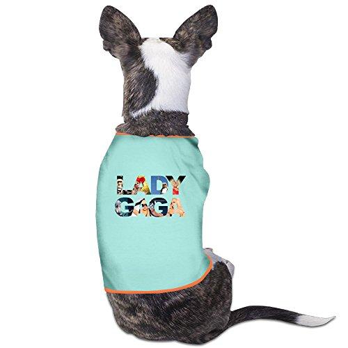 [PET-Cute Lady Gaga Singer Poster Pet Dog T-Shirt.] (Deluxe Adult Elizabeth Costumes)