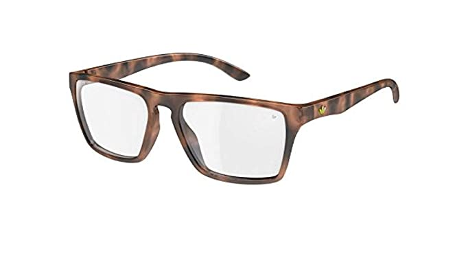 adidas Originals 6055 Havana Melbourne Wayfarer Gafas de sol ...