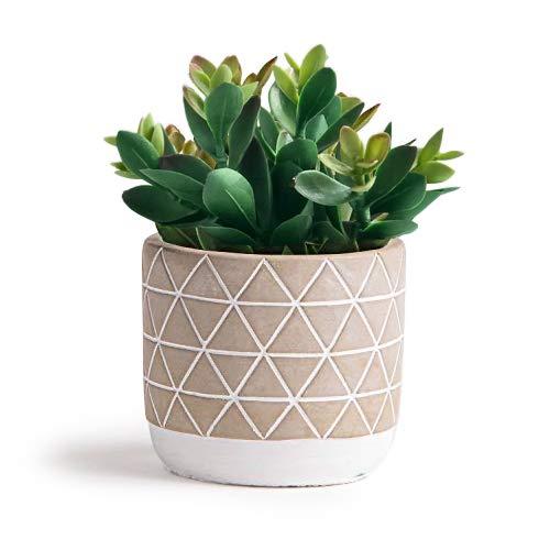 Kurrajong Farmhouse 7.5″ x 4.5″ Artificial Succulent Plant in Concrete Cement Pot, Beautiful Feaux Plant for Home Decor, Artificial Plants, Lifelike Fake Plant Decoration