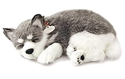 Amazon Com Realistic Breathing Alaskan Husky Perfect Petzzz Life