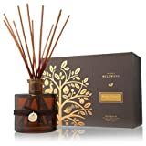 Thymes Brandied Pumpkin and Chestnut Reed Diffuser
