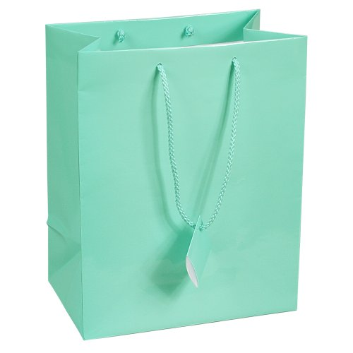 10 pcs Large Fancy Robin's Egg Blue Glossy Finish Shopping Paper Gift Sales Tote Bags with Blank Message Tag 7.75
