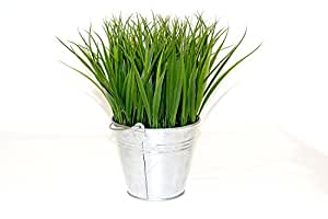Mexican artificial grass in tin bucket. 11'' tall