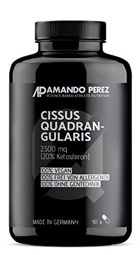 Cissus Quadrangularis 추출 2500 mg-20 %Ketosterones