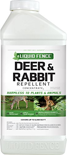 Liquid Fence Deer & Rabbit Repellent Concentrate, 40-Ounce by Liquid Fence