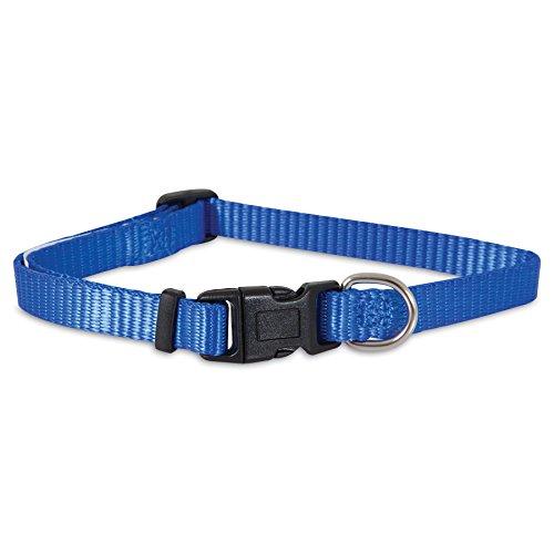 "Aspen Pet Products Nylon Adjustable Collar, Blue, 20-30"" x 1.5"""