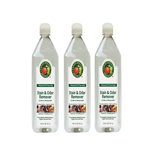 Venus Laboratories Earth Friendly (Petastic) Pet Stain & Odor Remover 32 oz (3-Pack) by Petastic (Earth Friendly Products), Venus Laborat