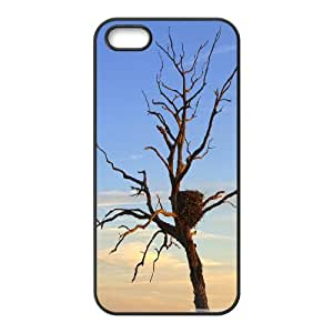 IPhone 5,5S Case Eagles Nest, Flying Eagle Kweet, {Black}