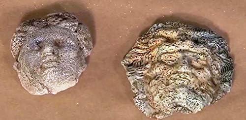 nat/ürlicher Epoxieharzkleber Apoxie Kleber 1 Pfund von Aves