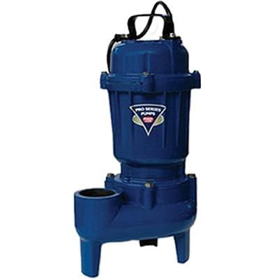 PHCC E7100-NS 1 HP Cast Iron Sewage Pump, Non-Switched