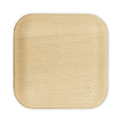 "VerTerra 6"" x 6"" Square Palm Leaf Plates - Compostable Dinnerware - Appetizer and Dessert Plates"
