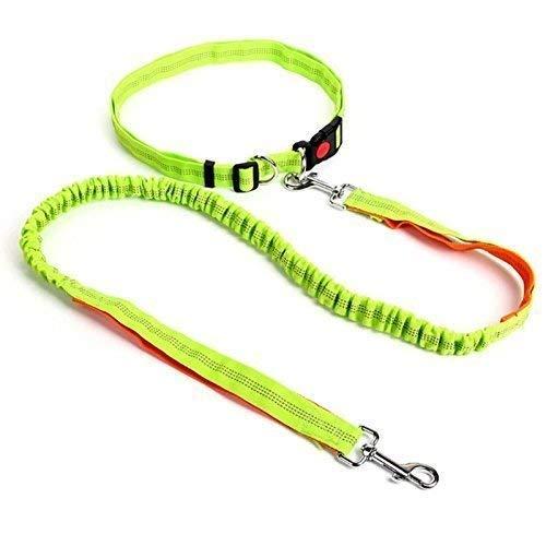 BIALINOLTI Premium Joggingleine für Hunde mit verstellbarem Bauchgurt ║ Reißfeste elastische Hundeleine aus Nylon 124cm - 175cm für Kleine und mittelgroße Hunde ║ Reflektierend, Neon Grün Neon Grün