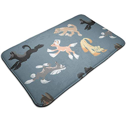 (Tuoneng Chinese Crested Fabric,Kitchen Carpet Rug Door Mat Rug for Bathroom Outdoor Porch Laundry Living Multifunction Doormat (19.5