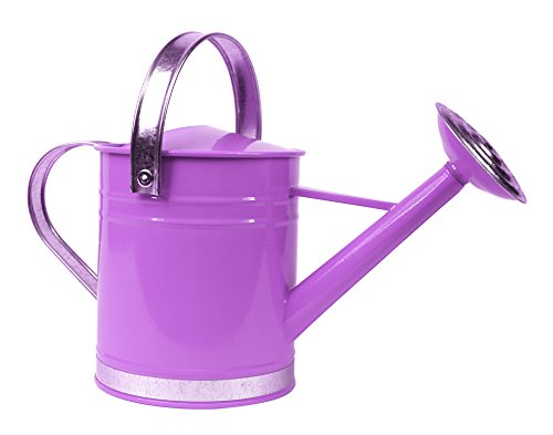 Arcadia Garden Products WC03 Basic Watering Can, 1/2 Gallon, Purple