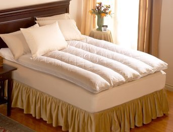 Pacific Coast 230 Thread Count Cotton Baffle Channel Euro Rest Queen Feather  Bed, 60 X