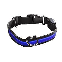 Eyenimal NGCOLLUM007 Pet Safety Light Collar, Small, Blue