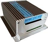 Ista Breeze Hybrid Charge Controller 12V-24V 650W for Wind Turbine, Wind Generator (12V)
