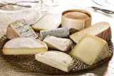 French Cheese Sampler - 5 Gourmet Cheeses from France