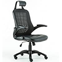 Anji Ergonomic High Back Mesh Office Desk Chair with PP Armrest  and Lumbar Support ,Tilt Tension, Black