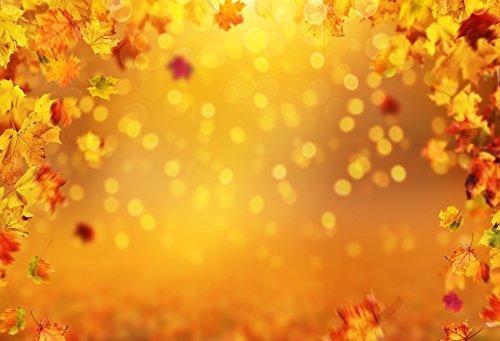 Leowefowa Dreamy Autumn Maple Tree Leaves Bokeh Backdrop 5x3ft Photography Backgroud Shiny Halos Orange Backgroud Fall Season Scene Outdoor Leisure Holiday Thanksgiving Deco ()