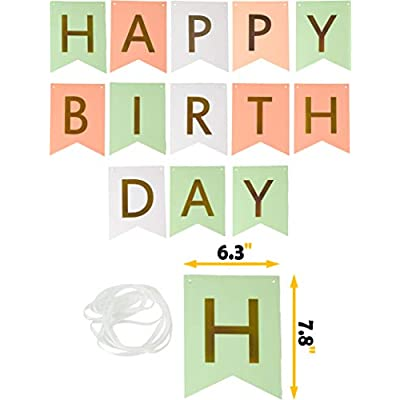 Pink Green White Happy Birthday Wall Banner| Mint Gold Glitter Peach Cream Paper Fans Birthday Decorations | Happy Birthday Decorations: Toys & Games