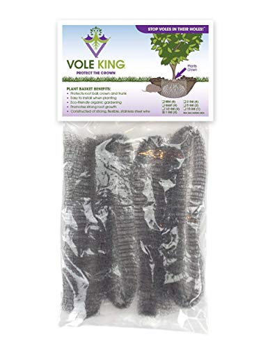 VOLE KING Plant Baskets, 1 Gallon, Pack of 4 - Protect Plants, Trees and Flowers from Voles, Gophers, Moles Without Repellent - Protect Landscaping from Mini Burrowing Animals - A One Time Solution