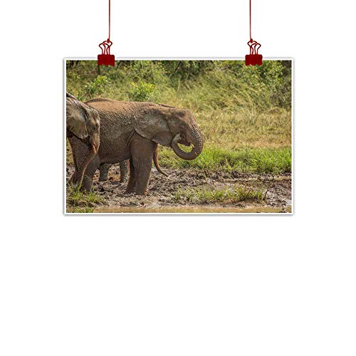 duommhome Wall Art Decor Poster Painting African Savannah Elephants at a Waterhole Modern Minimalist Atmosphere 35