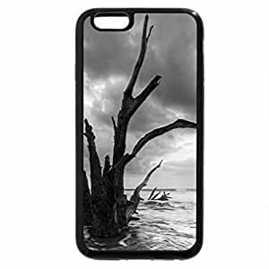 iPhone 6S Plus Case, iPhone 6 Plus Case (Black & White) - trees on a beach at sunset