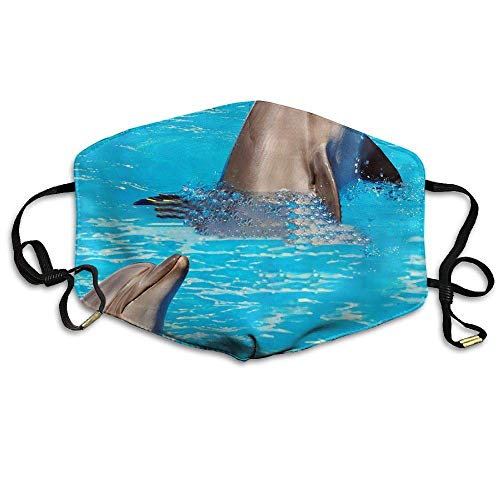 SOADV Mouth Masks Dolphin Anti Dust Face Mouth Cover Mask Respirator - Dustproof Anti-Bacterial Washable - Reusable Masks Respirator Comfy - Protective Breath Healthy Safety Warm Windproof -