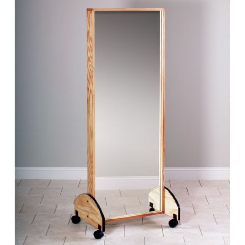 (CLINTON MIRRORS Mobile adult mirror Item# 6210)