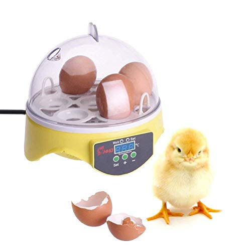 KUPPET 7 Egg Incubator Mini Digital Automatic Egg Hatcher for Chicken Goose Duck Poultry etc - Temperature Control-Yellow -