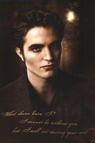 Twilight 2: New Moon  - Poster