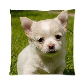 Amazon.com: Blanco Personalizado perro bebé imagen funda de ...