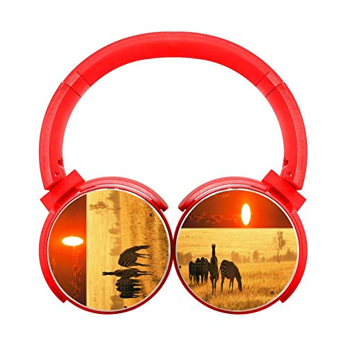 Zebra Grazing Bluetooth Headphones of Lightweight and Foldable Red Wireless