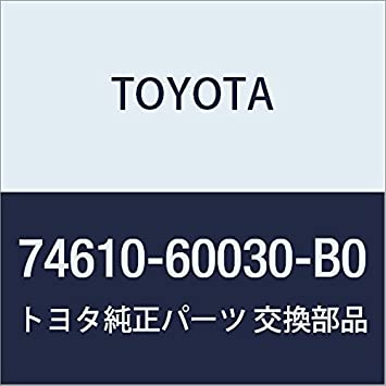 Toyota 74610-60030-B0 Assist Grip Assembly