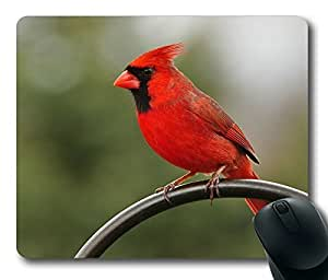 Rectangle mouse pad , Love Red Cardinal
