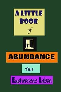 A Little Book of Abundance Tips