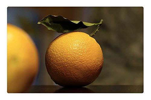 Tree26 Indoor Floor Rug/Mat (23.6 x 15.7 Inch) - Oranges Citrus Vitamin C Fruit Food Juicy