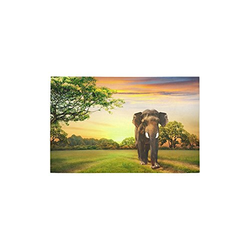 InterestPrint Elephant on Sunset Carpet Non Slip Modern Area Rugs 2'7