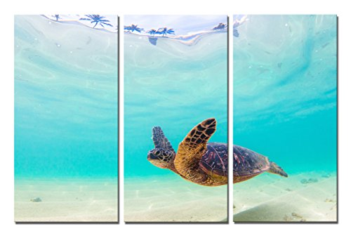 (Yin Art 3-Panel Modern Green Seascape Canvas Print Wall Art Set - Sea Turtle Swimming Underwater Through the Bright Blue Ocean - Triptych 12x24 Inch - Stretched and Framed Home Decor Ready to Hang)