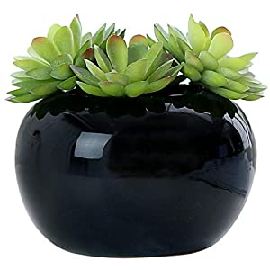 MyGift Decorative Modern Potted Green Artificial Succulent Plants w/Glazed Ceramic Flower Pot 68