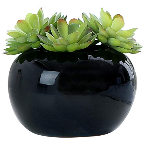 MyGift Decorative Modern Potted Green Artificial Succulent Plants w/Glazed Black Ceramic Flower Pot