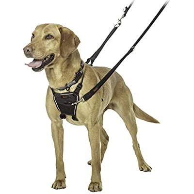 The Company of Animals HALTI No-Pull Harness