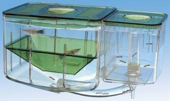Penn Plax AN2 Aqua Nursery and Hatchery Aquarium