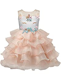 Baby Little Big Girl Dress with Embroidery