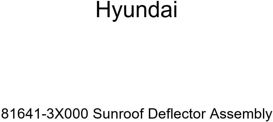 Genuine Hyundai 81641-3X000 Sunroof Deflector Assembly