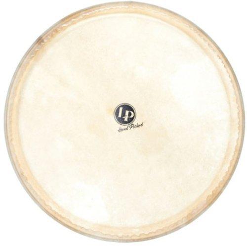 Latin Percussion LP960 14-Inch Galaxy Djembe Head by Latin Percussion